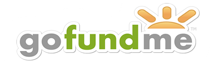 gofundme 1 in free fundraising crowdfunding online